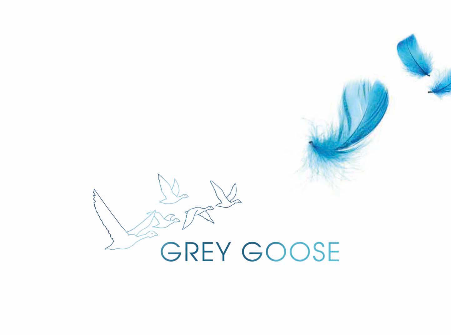 <span>GREY GOOSE</span><i>→</i>